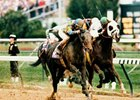 Concern in the 1994 Breeders' Cup Classic.