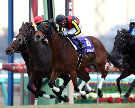 Gentildonna brought a fitting close to her illustrious racing career in scoring an impressive win in the $3.45 million Arima Kinen (Jpn-I), Japan's season-ending all-star race at Nakayama Racecourse.