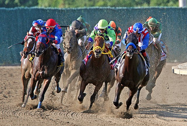 Bayern #2 (right) with Martin Garcia riding, leads the field around the final turn in the $1,000,000 Grade I William Hill Haskell Invitational at Monmouth Park in New Jersey.