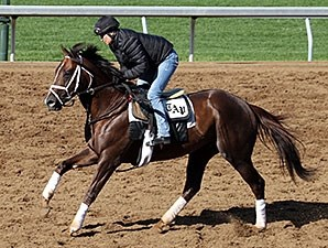 Carpe Diem jogs at Keeneland April 11.
