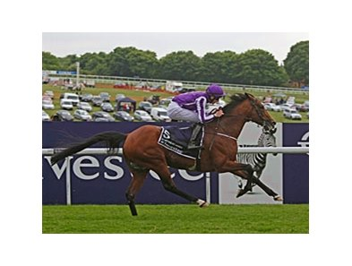 "St Nicholas Abbey takes the Coronation Cup for the third year in a row.<br><a target=""blank"" href=""http://photos.bloodhorse.com/AtTheRaces-1/at-the-races-2013/27257665_QgCqdh#!i=2547808452&k=RmZwgtH"">Order This Photo</a>"