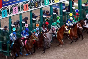 Florida Derby Race Sequence