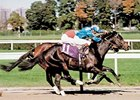 "Dayjur in the 1990 Breeders' Cup Sprint.<br><a target=""blank"" href=""http://photos.bloodhorse.com/Classics/Classic-Photos/22651042_hrMBZZ#!i=2790452740&k=TX5mHnj"">Order This Photo</a>"