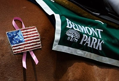 Welcome to Belmont Park for the 142nd Belmont Stakes.