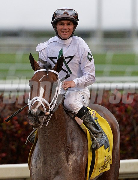 Constitution with jockey Javier Castellano, returns to the winner's circle after the $1M Besilu Florida Derby March 29, 2013 at Gulfstream Park in Hallandale, Florida.      (Skip Dickstein