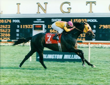 Mecke wins the Arlington Million
