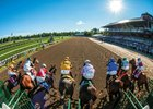 Start of the 2013 Whitney Invitational Handicap at  Saratoga in New York.