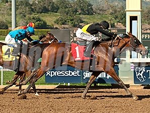Harlington's Rose wins the Las Flores Stakes.