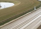 Jan. 19 Racing Canceled at Laurel Park