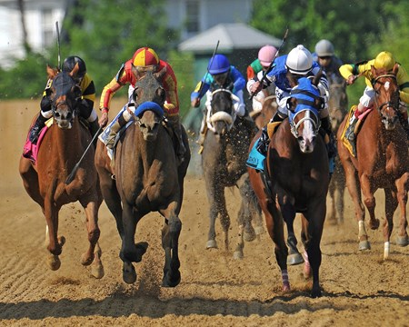 Fiftyshadesofhay (blue shadow roll), Joel Rosario up, runs by Marathon Lady, to win the 89th running of the Gr2 Black Eyed Susan, at Pimlico...