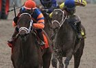 Rosie Napravnik won the Feb. 23 Rachel Alexandra Stakes aboard Unlimited Budget.