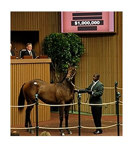 Hip 61, a colt by War Front out of Guide, sold for $1 million.