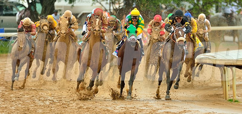 The Kentucky Derby field coming into the final turn. Photo by Rick Schmitt