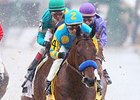 American Pharoah's Options Open After Rebel