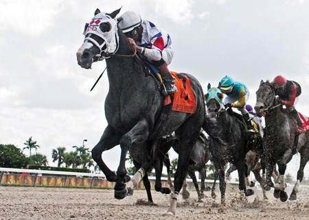 Calder Race Course   