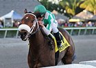 "Merry Meadow cruises to victory in the Hurricane Bertie.<br><a target=""blank"" href=""http://photos.bloodhorse.com/AtTheRaces-1/At-the-Races-2015/i-K9rJkJn"">Order This Photo</a>"