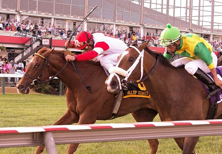 Emotional Kitten wins the Hilltop Stakes at Pimlico on May 17, 2013.