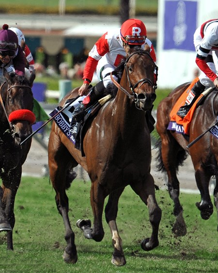 Bobby's Kitten, with Joel Rosario up, wins the Breeders Cup Turf Sprint (gr. I).