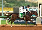 Shared Belief winning the Santa Anita Handicap.