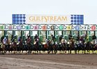 Handle for Horses and Slots Up at Gulfstream