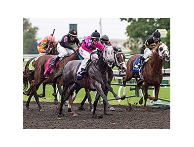 Poker Player in the Bourbon Stakes.
