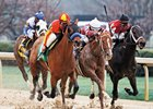 Hoppertunity (left) outfinishes Tapiture (middle) and Ride On Curlin to win the Grade II Rebel Stakes at Oaklawn Park.