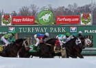 Winter racing at Turfway Park
