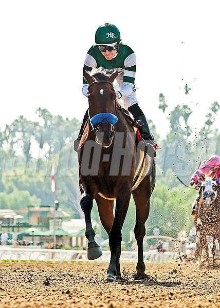 Iotapa was claimed for $50,000 in the 3rd race at Hollywood Park on June 21, 2012.  She became a dual Grade I winner including the $300,000 Vanity Stakes at Santa Anita Park pictured here.
