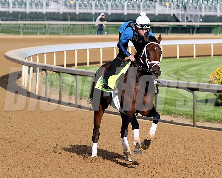 Palace Malice on the track at Churchill Downs on May 2, 2013. Photo By: Chad B. Harmon