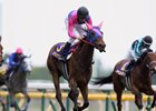 Meisho Mambo wins the Yushun Himba (Jpn-I, Japanese Oaks) at Tokyo Racecourse on May 19, 2013.