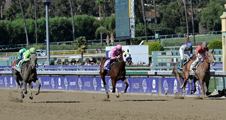 She's A Tiger (center), wins the Breeders' Cup Juvenile Fillies, but is disqualified for bumping with Ria Antonia and jockey Javier Castellano, who were declared the winners.