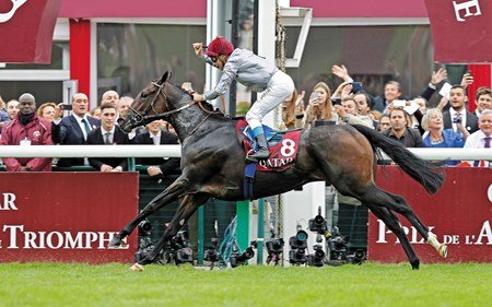 Treve left both detractors and admirers in awe as she raced unchallenged to a dominant victory in the Qatar Prix de l'Arc de Triomphe (Fr-I) for the second straight year at Longchamp in France.