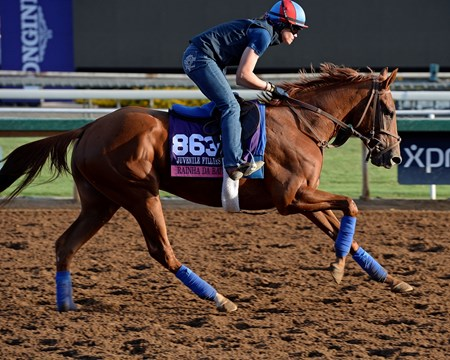 Caption:  Rainha Da Bateria