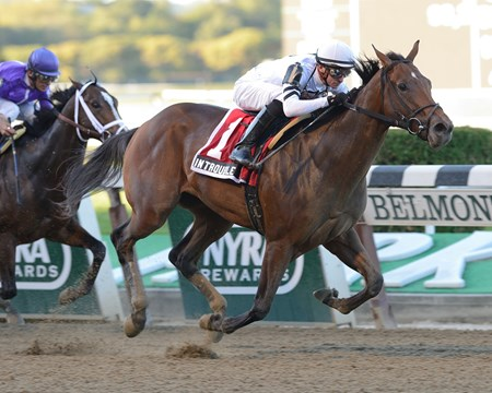 There were five 2-year-olds entered in the $196,000 Futurity Stakes (gr. II) Sept. 29 at Belmont Park, but it turned out to be a two-horse race as fast-developing In Trouble topped favored Corfu for a comfortable win.