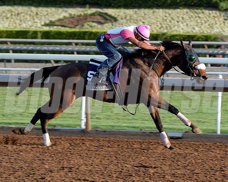 Caption:  Sweet Reason