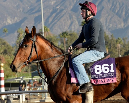 Caption:  Quality