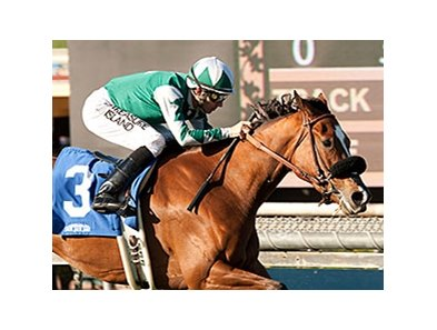 Singing Kitty won the China Doll Stakes by 1 1/2 lengths on March 7.
