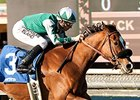 Former Claimer Chases Greatness in SA Oaks