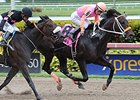 "Pants On Fire<br><a target=""blank"" href=""http://photos.bloodhorse.com/AtTheRaces-1/At-the-Races-2015/i-TXhf6jk"">Order This Photo</a>"