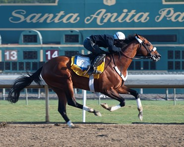 Caption:  Mucho Macho Man