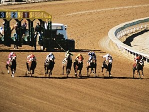 Keeneland: Track Plan About Horse Industry