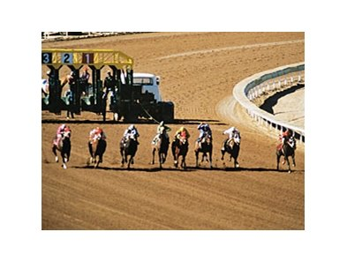 Quarter Horse racing fits with Keeneland's mission and objectives
