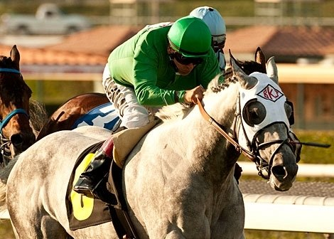 The week began with Columbus Day racing, and veteran California Flag taking the Morvich Stakes (gr. III) at Santa Anita.