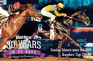 30 Years in 30 Days: Sunday Silence's Classic