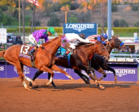 Bayern, with Martin Garcia, wins the  Breeders' Cup Classic (gr. I).