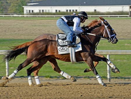 Caption: Vicar's In Trouble (outside) with Joel Berrientos works in company.