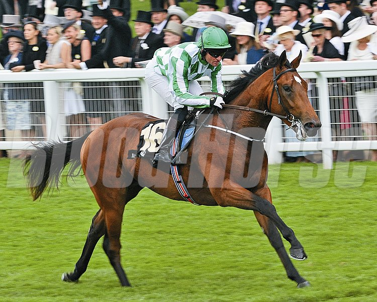 War Command wins the Coventry Stakes at Royal Ascot June 18, 2013.