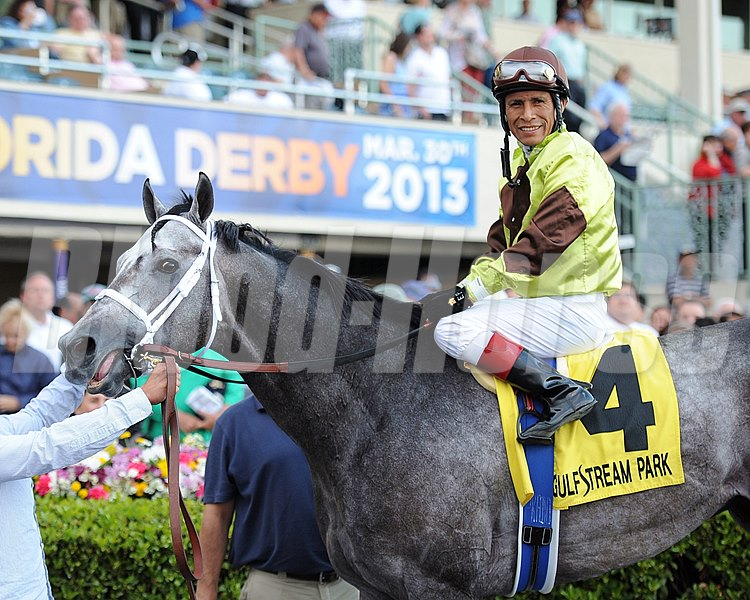 Graydar wins the Donn Handicap (gr. 1)