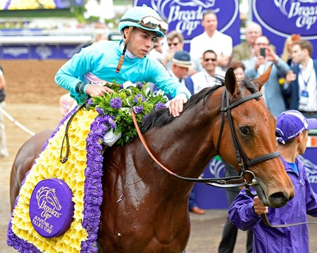 Lady Eli and jockey Irad Ortiz Jr. are adorned with flowers after winning the Grade I Breeders' Cup Juvenile Fillies Turf.