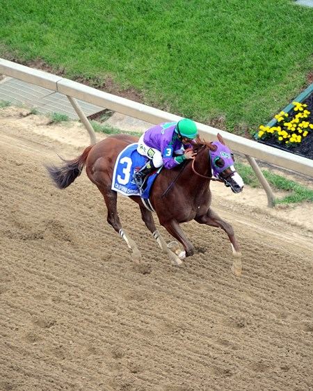 California Chrome runs down the final stretch.